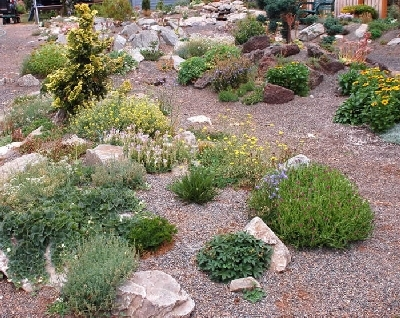 Asa lt alpinariumas for Small red rocks for landscaping