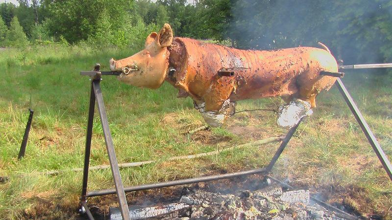 Kiaulės kepimas virš laužo